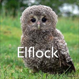 elflock