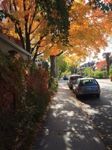 Riverdale, Toronto
